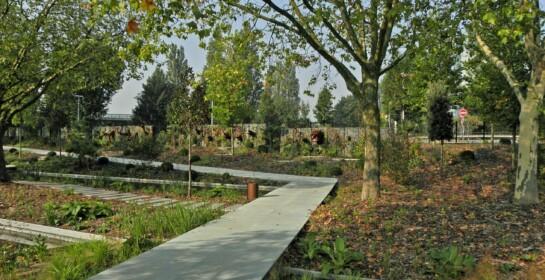 Allée du Jardin des Géants
